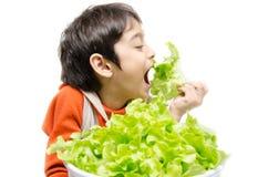 Мальчик есть свежий зеленый органический овощ Стоковое Изображение RF