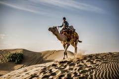 Мальчик ехать верблюд в пустыне стоковая фотография rf