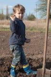 Мальчик засаживая картошки в саде Стоковые Фото