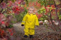 Мальчик играя в ненастном парке лета Ребенок при красочный зонтик радуги, водоустойчивое пальто и ботинки скача внутри стоковое фото rf