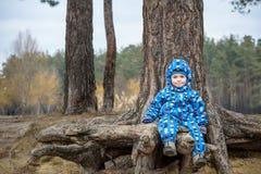 Мальчик играя, на ландшафте осени, сидя и усмехаясь корень дерева Стоковое Изображение RF