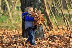 Мальчик играя с листьями в парке Стоковая Фотография