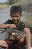 Мальчик ища рыбы в реке Стоковая Фотография