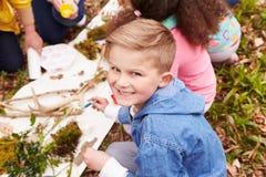 Мальчик ища Minibeasts в центре деятельности стоковое изображение rf