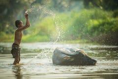 Мальчик и буйвол Стоковое Изображение RF