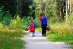 Мальчик и девушка идя на грибы выбирая в лесе Стоковое фото RF