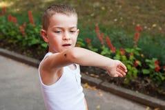 Мальчик и жук Стоковое Изображение RF