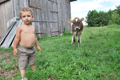 Мальчик и икра Стоковое Изображение