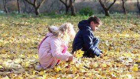 Мальчик и маленькая девочка собирают желтые кленовые листы сток-видео