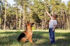 Мальчик и собака для прогулки Стоковое фото RF