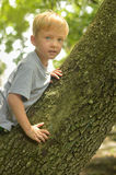 Мальчик и хобот Стоковая Фотография