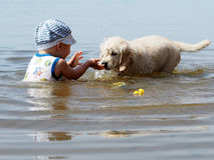 Мальчик и щенок играя в реке Стоковые Изображения RF