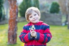 Мальчик маленького ребенка в красной куртке держа snowdrop цветет Стоковое Изображение RF