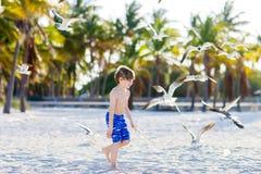 Мальчик маленького ребенка имея потеху на тропическом пляже Стоковое фото RF