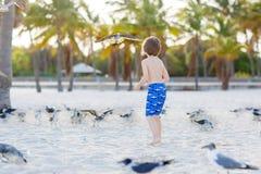 Мальчик маленького ребенка имея потеху на тропическом пляже Стоковое Фото