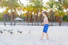 Мальчик маленького ребенка имея потеху на тропическом пляже Стоковые Фотографии RF