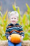 Мальчик на заплате тыквы Стоковые Фотографии RF