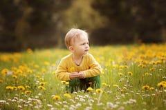 Мальчик на луге весны Стоковое Изображение