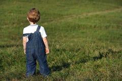 Мальчик на лужке стоковые фотографии rf