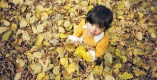 Мальчик осени Стоковое Изображение RF