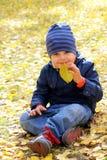 Мальчик пахнуть лист осени Стоковая Фотография RF