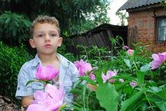 Мальчик пахнуть пионом. Стоковое Фото