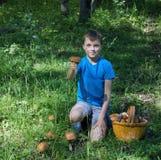 Мальчик показывает подосиновик гриба отрезка Стоковая Фотография