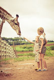 Мальчик подавая жираф на зоопарке Стоковое фото RF