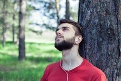 Мальчик под деревом стоковая фотография rf