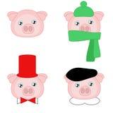 Мальчик свиньи в различной шляпе Стоковые Изображения