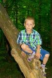 Мальчик сидя деревом стоковое изображение rf
