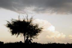 Мальчик сидя на под дереве Стоковое Изображение RF
