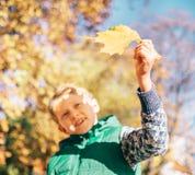 Мальчик смотрит на свете солнца с желтым кленовым листом Стоковое Изображение