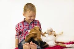 Мальчик с биглем собаки Стоковая Фотография RF