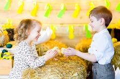 Мальчик с девушкой на сене с цыплятами Стоковая Фотография RF