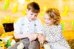 Мальчик с девушкой на сене с цыплятами Стоковая Фотография