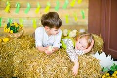 Мальчик с девушкой на сене с цыплятами Стоковые Фотографии RF