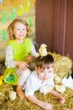 Мальчик с девушкой на сене с цыплятами Стоковые Фото