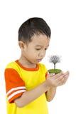 Мальчик с деревом. Стоковые Фотографии RF