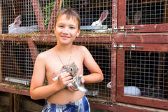 Мальчик с маленьким кроликом Стоковые Изображения RF