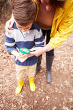 Мальчик с насекомым матери рассматривая с лупой Стоковая Фотография RF