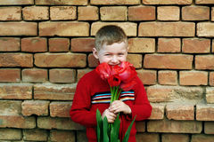 Мальчик с пуком красных тюльпанов смотря камеру Стоковые Фото