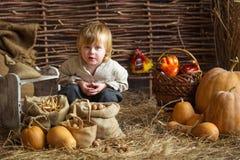 Мальчик с тыквами стоковая фотография rf