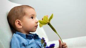 Мальчик с цветком Стоковое Фото