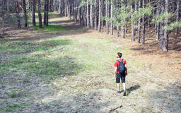Мальчик с backpack стоковые изображения rf