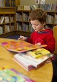 Мальчик читая книгу в библиотеке Стоковая Фотография