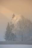 мглистая зима утра Стоковая Фотография RF