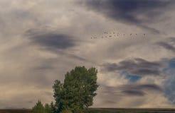 Мглистая погода Стоковая Фотография RF
