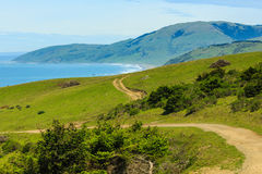 Меандры грязной улицы вдоль гребня o fgreen холмы вдоль побережья Калифорнии Стоковая Фотография