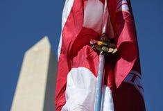 медали американского флага Стоковая Фотография